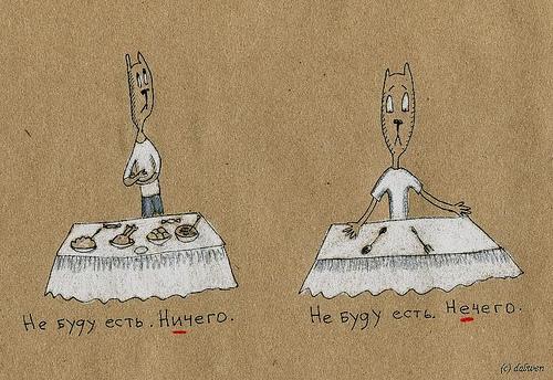 Грамматика с котами. Ничего vs. нечего